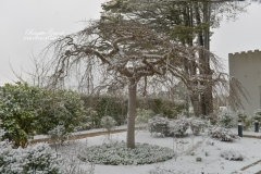 Snow-Hydro-BrigitteGrantPhotography©-9