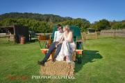 wedding-361